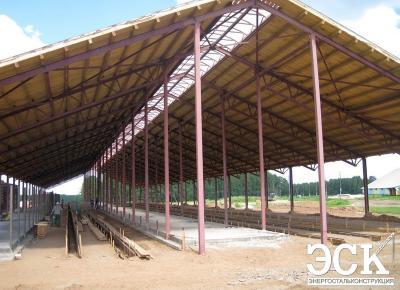 Ферма беспривязного содержания на 300 голов